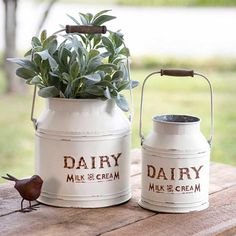 Set of 2 metal milk can buckets, rustic and whimsical. Can be used in all areas of the house. Kitchen plants and utensils. bathroom to hold hair and makeup brushes, living area for dried flower pics or real plants, Large: 10 dia. x 10¾. Small: 7 dia. x 8½. Handles fold for easy shipping