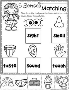 Terrific Pictures 5 senses preschool crafts Popular This page provides SO MANY Kids crafts which are acceptable for Preschool and Small children. I believed it was time p Five Senses Preschool, 5 Senses Activities, My Five Senses, Preschool Lessons, Preschool Learning, Kindergarten Worksheets, Kindergarten Activities, Preschool Activities, Teaching