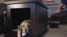 The Zencrate is a smart dog crate that will soothe your pet Read more Technology News Here --> http://digitaltechnologynews.com  The dog crate got an upgrade... and its high-tech features will be sure to ease your dog's anxiety. Read more...  More about Mashable Video Design Tech Pet and Cute Source/Original Post -> http://mashable.com/2016/12/22/high-tech-dog-crate/ #tech #news #trending #leak FOLLOW ON FACEBOOK! https://www.facebook.com/TechNewsTrends/