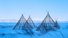 Sami lavvu structures, Finnmark, Norway (© Céleste Manet/plainpicture) – 2018-01-25 [http://www.bing.com/search?q=finnmark+norway&form=hpcapt&filters=HpDate:%2220180125_0800%22]