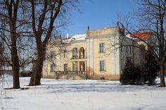 Pałac w Paruszewie wybudowany w XIX w. z inicjatywy Waleriana Hulewicza, a następnie przebudowany (architekt – Stanisław Mieczkowski) w 1910 r. przez ówczesnych właścicieli – Janinę z Hulewiczów i Stanisława Błociszewskiego. Po zakończeniu II wojny światowej budynek został przejęty przez Skarb Państwa po czym utworzono w nim biuro PGR, mieszkania i stołówkę dla pracowników oraz przedszkole.  Aktualnie właścicielem majątku jest Agencja Nieruchomości Rolnych.