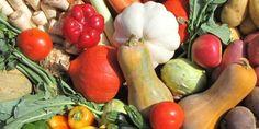 Rábcakapi Biokertészet és Biomag Malom Kft. - Kezdőoldal Malm, Eggplant, Stuffed Peppers, Vegetables, Food, Stuffed Pepper, Vegetable Recipes, Eten, Stuffed Sweet Peppers