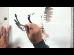 "In this video, we will be seeing a small clip of Lian Quan Zhen demonstrates his techniques used in painting a Japanese crane. From his DVD""Painting Traditional Japanese Ink Painting, Sumi E Painting, Chinese Painting, Watercolor Paintings, Watercolours, Watercolour Tutorials, Watercolor Techniques, Painting Techniques, Japanese Crane"