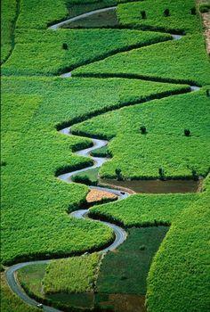 Rodovia Alterne Back, Nova Caledônia, França.  Fotografia: http://www.duskyswondersite.com