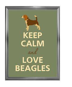 bewahren Sie die Ruhe und Liebe beagles