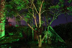 Bring the magic of fireflies to your backyard with the Spright Green! By aiming your lights directly onto your trees, you can achieve the appearance of fireflies! Be sure to use your Spright Move to create this effect without wind. #HomeandGarden #Decoration #Outdoors #backyard #Green #lights