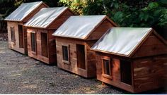 Cedar Dog Houses and shavings Winter Dog House, Dog Mansion, Wind Break, Dog Houses, Home And Away, Dog Bed, Beds, Outdoor Structures, Mansions