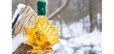What health benefits does maple syrup offer?