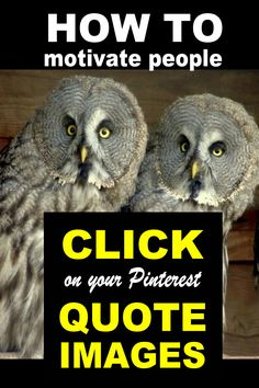 http://cashforbloggers.com/click-quote-images  How to Motivate People Click on your Quote Images