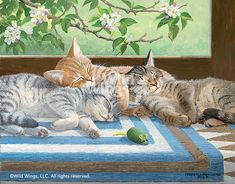 Tabby Naps - Cats Original acrylic painting by Persis Clayton Weirs Kittens cuddled together for an afternoon nap