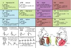 Nursing Student Medication Cheat Sheets | 12 Lead ECG Cheat Sheet