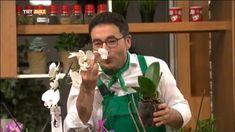 Orkide nasıl sulanır, orkide bakımı ve çoğaltılması ile ilgili çok güzel bilgilerin olduğu bir video. Orkidesi olanlar, orkide tutkunları bu videoyu mutlak