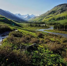 hikes around crested butte