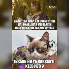 Bc dialogue ke naam par kuch bhi bakte -.- Funny Bunnies, Dil Se, Urdu Quotes, Haiku, Sarcasm, Humor, My Favorite Things, Desi, Instagram Posts