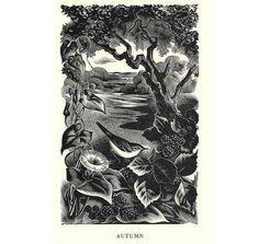 Agnes Miller Parker, Autumn (wood engraving)