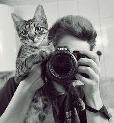 Assistente de fotografia
