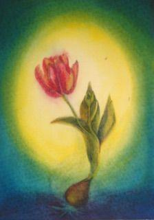 Tulp in nat in nat schildertechniek