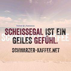 SCHEISSEGAL - SCHWARZER-KAFFEE