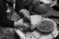Artesana trabajando con semillas de argan - Mujer trabajando con semillas de Argan para despues hacer aceites y productos derivados Argan, Seeds, Oil, Products, Places To Visit