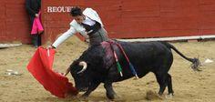 #Requena · 14 febrero · Jesús Duque se enfrentó al toro de mayor transmisión y duración del festejo. Tuvo que luchar el de la tierra con el fuerte vendaval en una labor muy meritoria. Mató bien y cortó dos orejas @aplausos