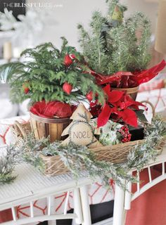 Christmas Decor  |