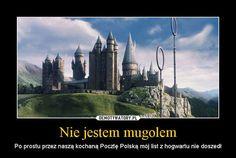 Memy z HP # Losowo # amreading # books # wattpad Harry Draco, Harry Potter Marauders, Harry Potter Fan Art, Harry Potter Memes, Draco Malfoy, Slytherin, Hogwarts, Funny Mems, Fantastic Beasts And Where