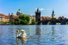 It took us 5 different visits to the capital of Czech Republic to write this ultimate list of what to do in Prague, including where to stay in the city!