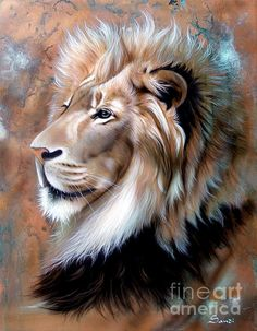 Copper King - Lion Print by Sandi Baker