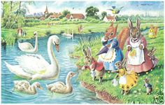 Helps postcard - The Cygnets, Swans by Racey Helps, Dressed Animals Colorful English Postcard, Pk 273 Beatrix Potter, Bunny Art, Woodland Creatures, Book Illustration, Vintage Postcards, Animal Drawings, Cute Pictures, Artwork, Painting