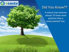 10 WPC Boards = Save one tree  Every Boards You Buy,Contributes To Plantation of a Tree  Its a Green Solution for a green revolution