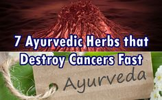 7 Herbs Used in Ayurveda that Destroy Colon  http://naturalsociety.com/7-ayurvedic-herbs-kill-colon-cancers-fast/