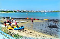 104 Best Summer Vacation Fun in Cape May County, New Jersey