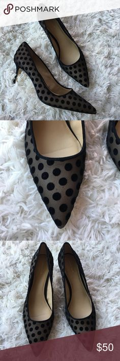 Ann Taylor Polka Dot Heels These heels are a black and nude Polka dot. These are basically brand new condition. Size 9. Save on ✈️SHIPPING✈️and 🎁BUNDLE! I even give a discount on 3 or more regularly priced item bundles. I always accept reasonable offers with the offer button! 🚫❌Lowball offers please! Ann Taylor Shoes