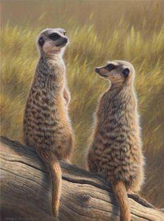 Andrew Hutchinson Artist | Illustrator Andrew Hutchinson (Andrew Hutchinson) was born in North ...