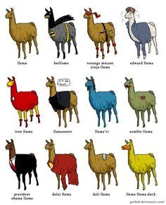 Llama, batllama, teenage mutant ninja Because I cannot let myself live this down: llama, edward llama, iron llama, llamanator, llama'vi, zombie llama, president obama llama, dalai llama, dali llama, llama llama duck.