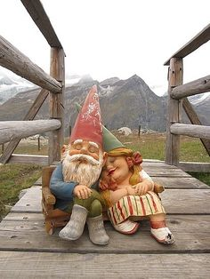 Romancing the Gnome.