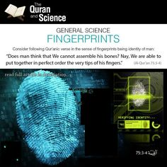 Fingerprints proportion mentioned in the Quran - Subhaan Allah