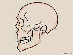 Imagen titulada Draw a Skull Step 16
