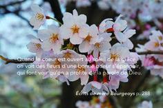 Écrits de Marguerite Bourgeoys