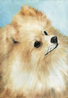 Vintage Pomeranian art images   pomeranian-charlotte-yealey.jpg