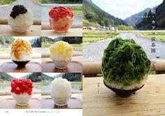 ゴーラーのためのかき氷ガイド本「にっぽん氷の図鑑 かき氷ジャーニー」 - えん食べ