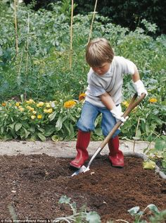 Need some low maintenance garden design ideas? Learn the fundamentals and tips to creating the perfect low mainteance outdoor space in our feature article. Olive Garden, Autumn Garden, Gardening Photography, Little Gardens, Farm Life, Country Life, Children Photography, Shade Garden, Garden Landscaping