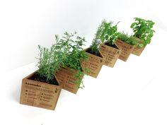 Wood Engraved Triangle Herb Planter Boxes - Set of 6 via @Etsy #treasury #etsy