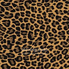 Leopard Print Digital Paper Leopard Pattern Animal by MovingLines
