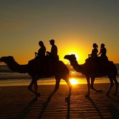 Cable Beach Camel Rides