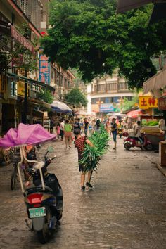 Carrying bamboo