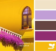 Design Seeds celebrate colors found in nature and the aesthetic of purposeful living. Colour Pallette, Colour Schemes, Color Patterns, Color Combinations, Bright Colour Palette, Bright Colours, Color Harmony, Color Balance, Lila Palette