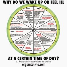 TCM Body Clock: Why Do We Wake Up or Feel Ill at a Certain Time of Day? | Organic Olivia