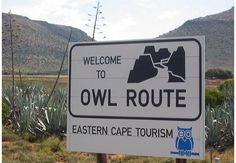 Murrayfield Guest House in Nieu-Bethesda, Eastern Cape Owl House, Bed And Breakfast, South Africa, Cape, Tourism, Amazing Things, Places, Google Search, Breakfast In Bed