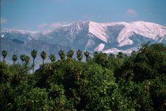 Why I Love Redlands, California